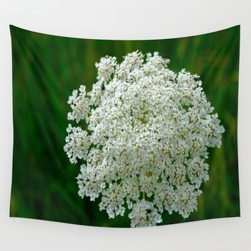 Queen Anne's Lace Wall Tapestry by Lindsey Jennings Photography