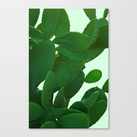 Cactus On Cyan Background Canvas Print by ARTbyJWP