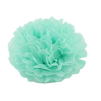 "Fonder Mols® Pack of 5 10"" and 14"" MINT Tissue Paper Pom Poms Flower Ball Wedding Bridal Shower Party Decoration"