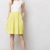 Laced Lemondrop Dress