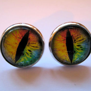 Rainbow reptile eye stud earrings