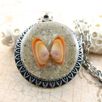 Orange Coquina Seashell Pendant Necklace with Sand and Shell from Sanibel Florida
