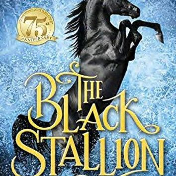 The Black Stallion (The Black Stallion)