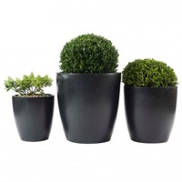 PR Home Cone Planter Set Of 3