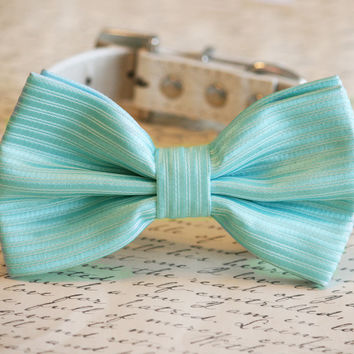 Tiffany Blue Wedding Dog Collar, Tiffany Blue Dog Bow tie, Tiffany Blue Wedding
