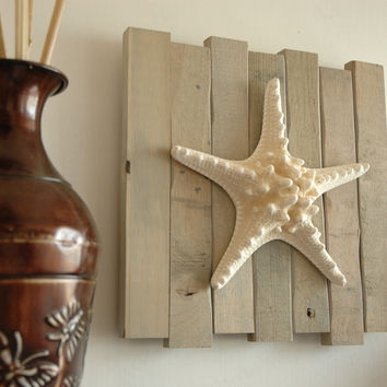 Beach Décor: Knobby Starfish Wall Art in Sun Bleached Drift Wood