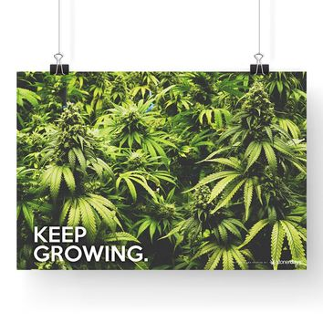 "MARIJUANA POSTER KEEP GROWING CANNABIS 13""X19"""