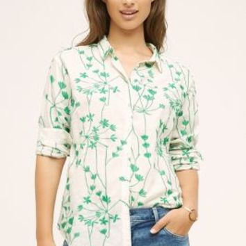 Holding Horses Embroidered Vines Buttondown in Green Size:
