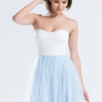 Elsa Lace 'N Tulle Skater Dress GoJane.com