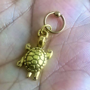 Gold turtle, gold plated captive ring Helix, cartilage,earring