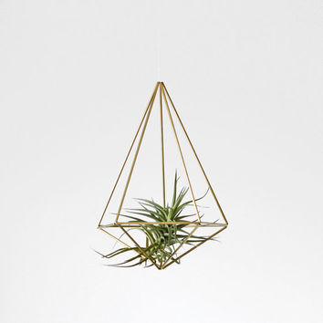 Brass Himmeli Prism no. 2 / Hanging Modern Mobile / Geometric Sculpture / Air Plant Hanging Planter / Minimalist Home Decor