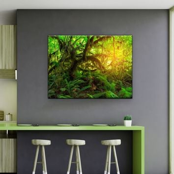 Olympic Fern Forest Canvas Set