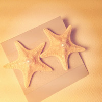 Real Starfish Stud Earrings