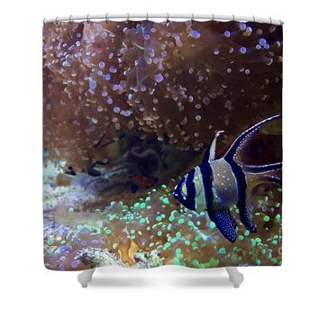 Saltwater Fish Shower Curtain