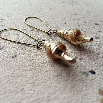 Real shell dangle earrings - mermaid earrings - ocean earrings - beach earrings - sea earrings - ocean earrings - summer jewelry - siren