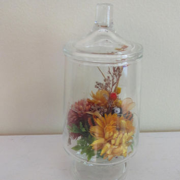 Vintage Glass Terrarium with Dried Flowers | apothecary jar | 1970's terrarium