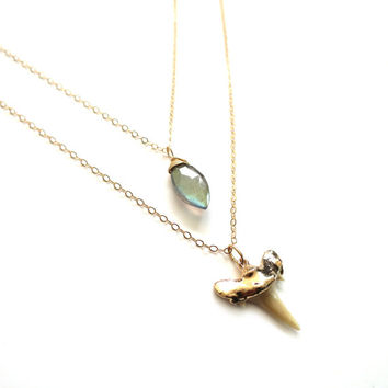 Real Shark Tooth Necklace, Dainty Gold Shark Tooth Necklace, Shark Tooth Pendant, Labradorite Necklace, Gold Layer Necklace, Shark Layer