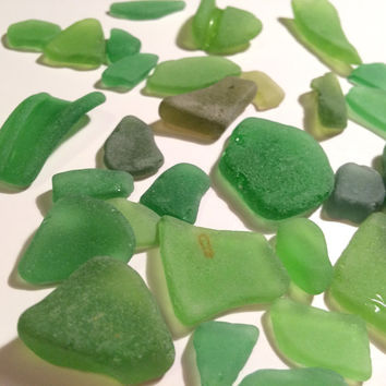 Green Sea glass Lot 30 frosty green pieces of texas beach glass seaglass supply shades of green texas surf tumbled glass jewlery supply