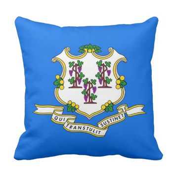 Connecticut State Flag American MoJo Pillow