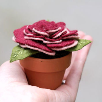 Felt Potted Flower // Garnet and Blush // Unique Textile Flower Sculpture // Handmade by OrdinaryMommy on Etsy