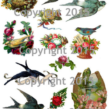 Vintage Images of Birds and Flowers Collage Sheet