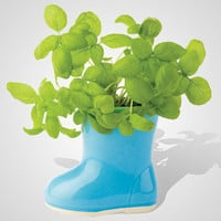 fredflare.com | 877-798-2807 | mini rainboot gardens