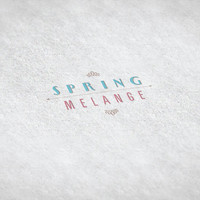 Spring Melange // Pre-made Logo Design / Etsy Set, Social Media Profile Set / One Of A Kind Logo Design / Unique Full Brand Set... and More