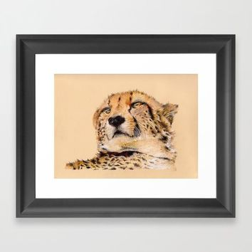 Season of the Cheetah Framed Art Print by michael jon