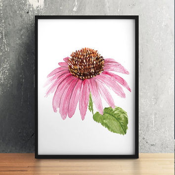 Echinacea decor Flower poster Floral print Watercolor print ACW297