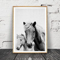 Horse Print, Black and White Photography, Horse Photo Wall Art, Icelandic Horse, Wilderness Print, Equestrian Art, Printable Art,