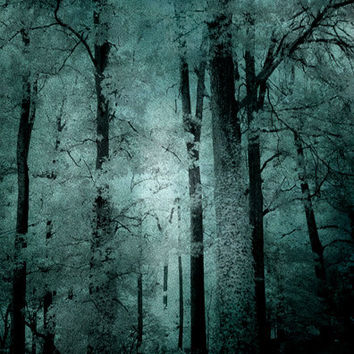 Nature Photography, Dreamy Haunting Woods Forest Trees, Mint Teal Woodlands, Dark Green Nature, Surreal Tree Art, Fine Art Nature Photo 8x12
