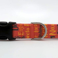 Spell Bound Dog Collar (Martingale, Buckle or Tag)