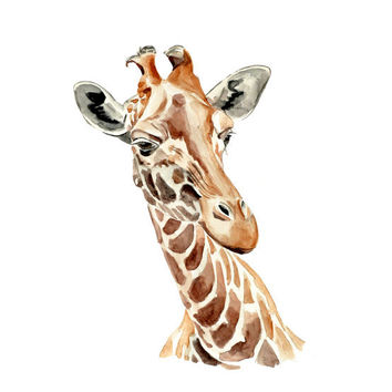 Giraffe Original Watercolor Painting 13x19 fine art wild animal illustration wall art home decor realistic artwork