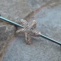 Star Fish Industrial Piercing Barbell Blue 14ga Body Jewelry Ear Jewelry Double Piercing 316L Surgical Stainless Steel