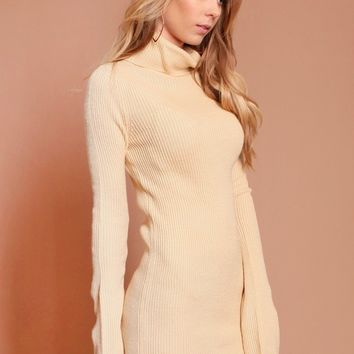 On The Horizon Turtleneck Dress