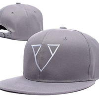 HAIHONG DJ Paul Van Dyk Logo Adjustable Snapback Caps Embroidery Hats - Grey