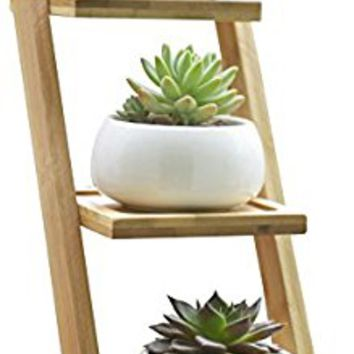 Jusalpha 3.2 Inches Ceramic Modern Decorative Small Round Succulent Plant Pot, Planter for Succulent Plants, Small Cactus and Herbs with Bamboo Tray for Room Decor- Set of 3 (White)