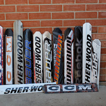 Hockey Goalie Paddles for Projects