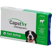 Capstar Flea Tablets for Dogs Over 25lbs. | Petco Store