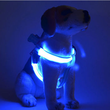 XS S M L LED Flashing Light Dog Harness attractive Halloween Party Pet Puppy Harness Collar Lead Leash for Small Medium Dogs