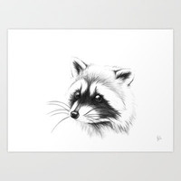 raccoon Art Print by Julia Bramer