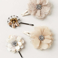 Anthropologie - Palebloom Clips