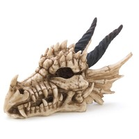 Dragon Skull Polyresin Treasure And Trinket Box