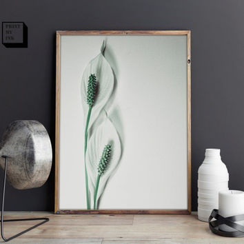 white lily print, calla lilies, flower wall print, digital art, instant download, white printable, lillies photography, flower photo print
