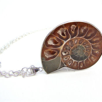 Ammonite fossil pendant necklace - chamber nautilus pendant - fossil pendant by Sparkle City Jewelry
