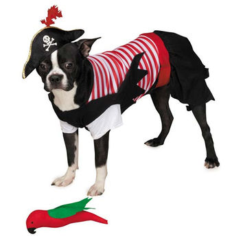 Pirate Tails Costume