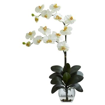 Silk Flowers -Double Cream Phal Orchid With Vase Artificial Plant