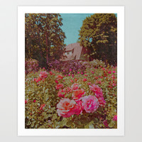 Pink and Coral Rose Garden and Brown Cottage Art Print by Brooke Ryan Photography