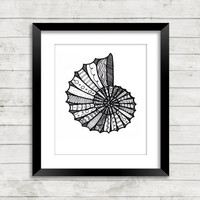 Coastal Art, Coastal Art Print, Seashell Art Print, Seashell