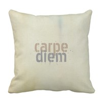carpe diem throw pillow shabby chic decor